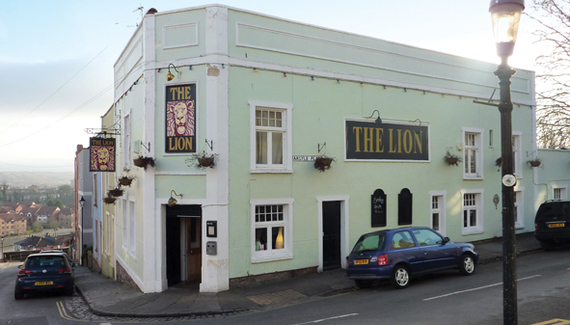 The Lion - Gallery