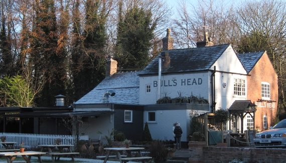 The Bull's Head - Gallery