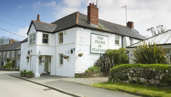 The Plume of Feathers - Gallery