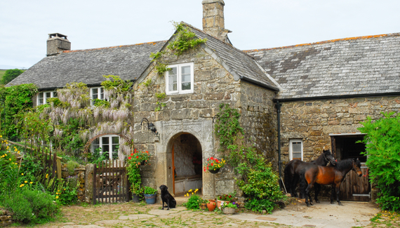Corndonford Farm - gallery