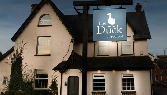 The Duck at  Yeoford - Gallery