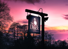 The Duck at  Yeoford