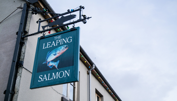 The Leaping  Salmon - Gallery