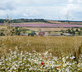 The Bothy, Launceston Farm - Gallery - picture