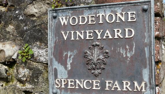 Wodetone Vineyard - Gallery