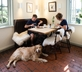 Watership Down Inn - Gallery - picture