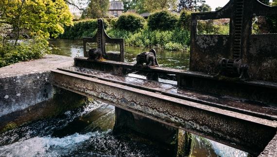 Watership Down Inn - Gallery