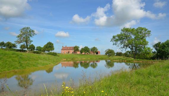 Primrose Hill Farm - gallery