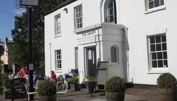 The Swan - Gallery