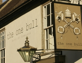 The One Bull
