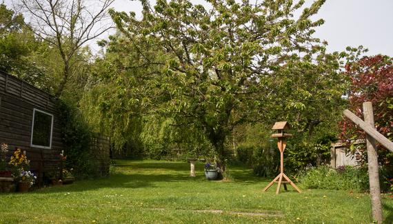 Willow Cottage Tea Room