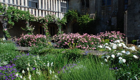 Great Chalfield Manor - gallery