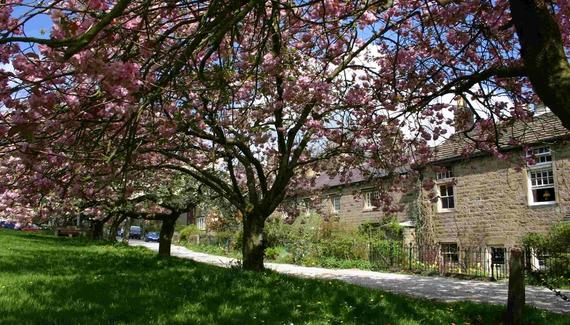 Bewerley Hall Cottage - Gallery