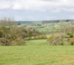 Firs Farm - gallery - picture