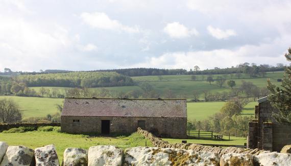 Firs Farm - gallery