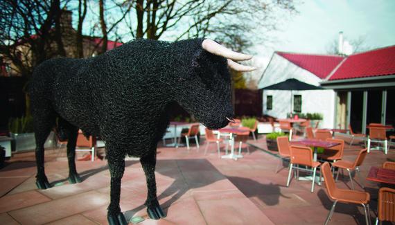 The Black Bull - Gallery
