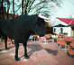 The Black Bull - Gallery - picture