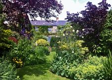 The Garden Suite