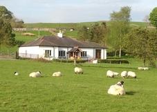 Longshot Cottage