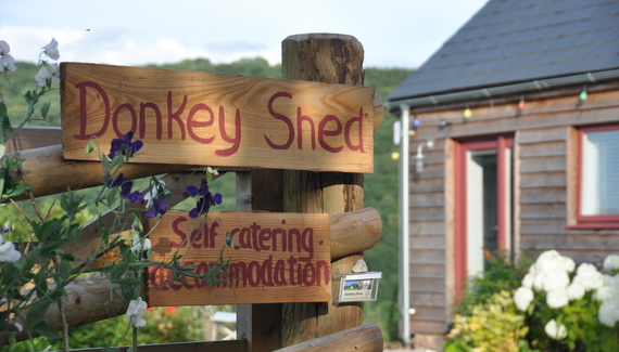 Donkey Shed - Gallery