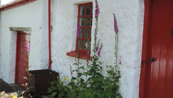 Pembrokeshire Farm B&B - Gallery