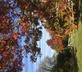 Pembrokeshire Farm B&B - Gallery - picture