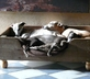 Manoir de Kerledan - Gallery - picture