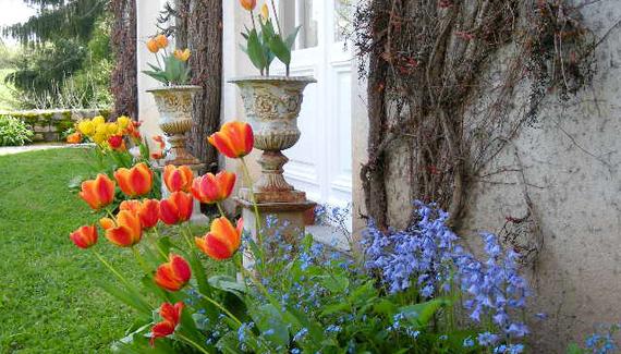 L'Orangerie - gallery