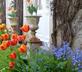 L'Orangerie - gallery - picture