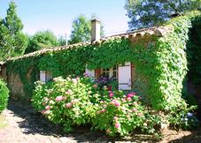 Maison Puech Malou - The Cottage