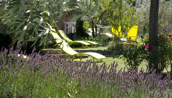 Le Grand Jardin - Gallery