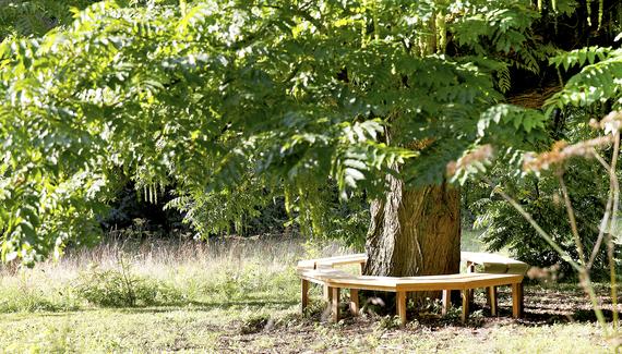 Un matin dans les bois bed breakfast in pas de calais alastair sawday 39 s special places to stay - Un matin dans les bois ...