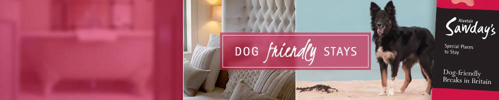Dog friendly breaks in britain sawday sDog Friendly Places To Stay Near Bath  pet friendly destinations  . Dog Friendly Places To Stay Bath. Home Design Ideas