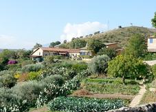 Regaleali Winery Estate