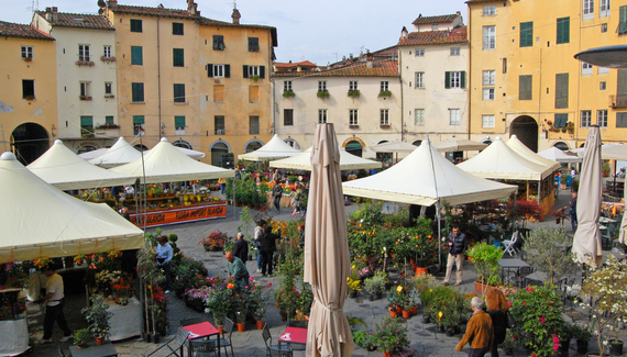 Arena di Lucca - gallery