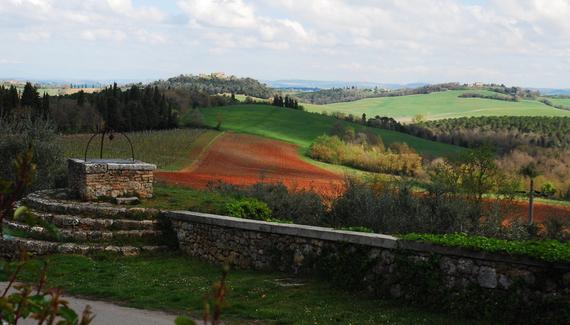 Bichi Borghesi Scorgiano - gallery
