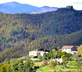 Locanda del Gallo - gallery - picture