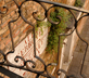 Il Giardino di Giulia - Gallery - picture