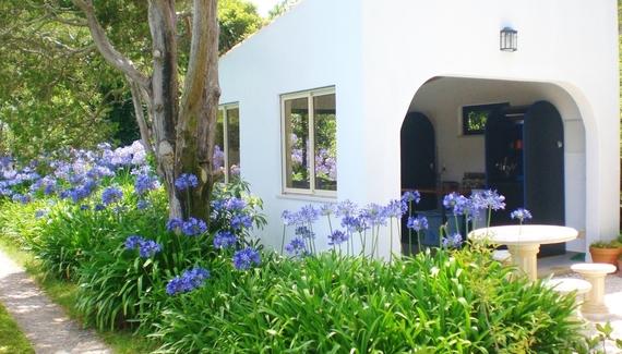 Quinta Colina Flora - Gallery