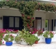 Quinta Colina Flora - Gallery - picture