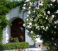 Monte Saraz - gallery - picture