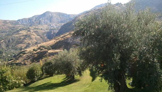 La Almunia del Valle - gallery