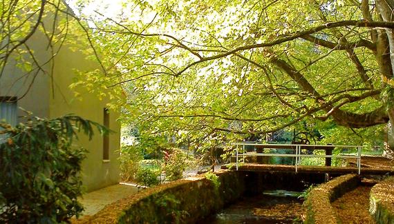 El Jardín de Carrejo - gallery