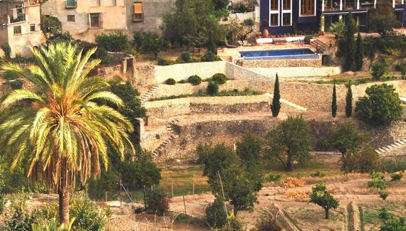 Almassera City